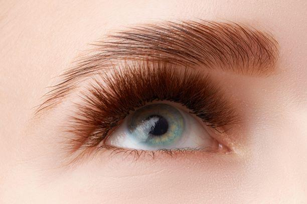 Brow lift format s
